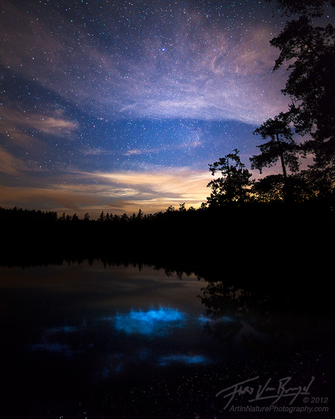 http://www.artinnaturephotography.com/photo/bioluminescence-san-juan-islands-moonset/