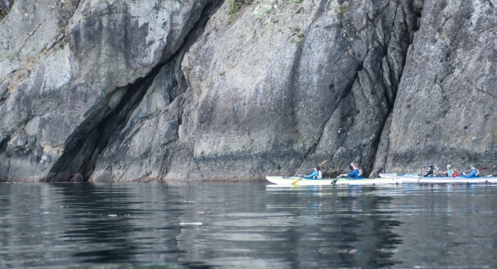 San Juan Outfitters Kayaking in the San Juan Islands