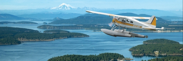 Whale Watching + Flight from Seattle Package Tour