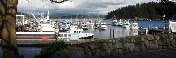 San Juan Island and Friday Harbor marina are both a great first stop on your San Juan Island Outfitters Adventure