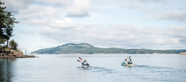 3 hour guided sea kayak tours from Roche Harbor
