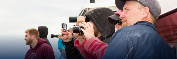 Watch orcas and humpbacks with San Juan Island Outfitters