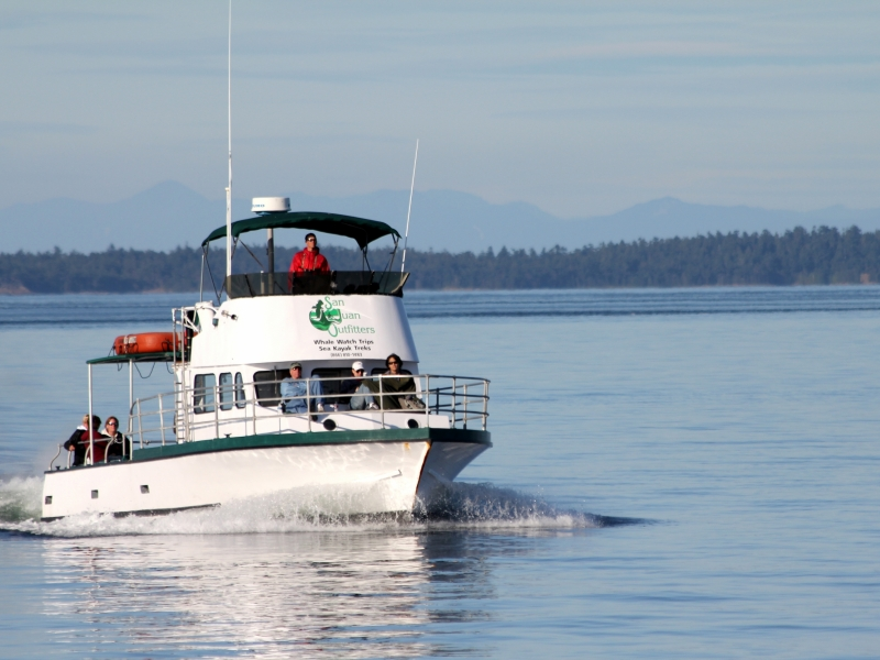 US Coast Guard Certified Vessel - MV Sea Hawk 24 Passenger