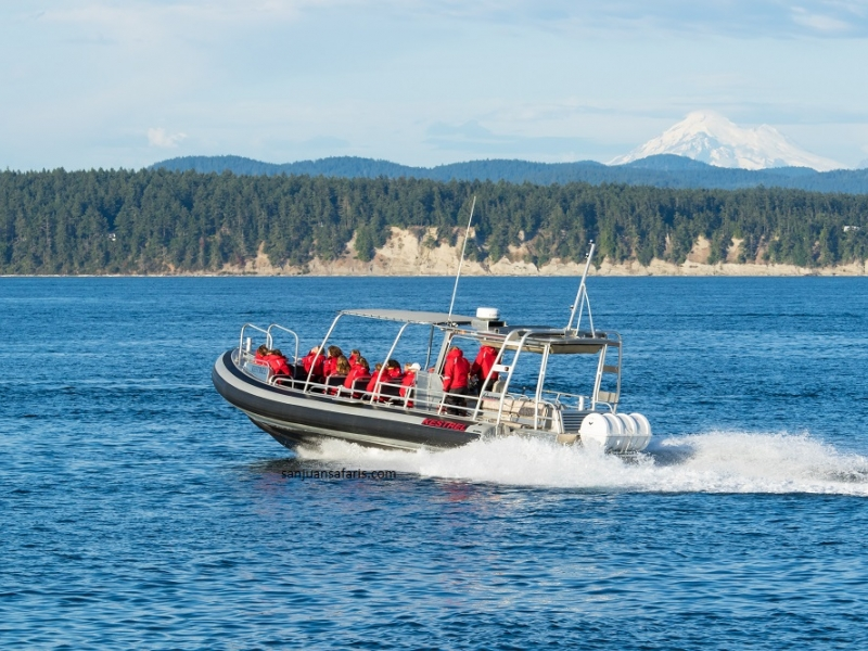San Juan Island Outfitters is one of the top tour providers in the Pacific Northwest, based out of Roche Harbor
