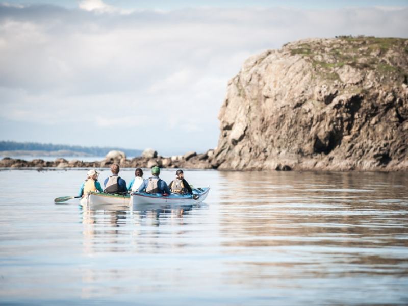 Paddle kayak tour among the Cactus Islands of the San Juan Islands
