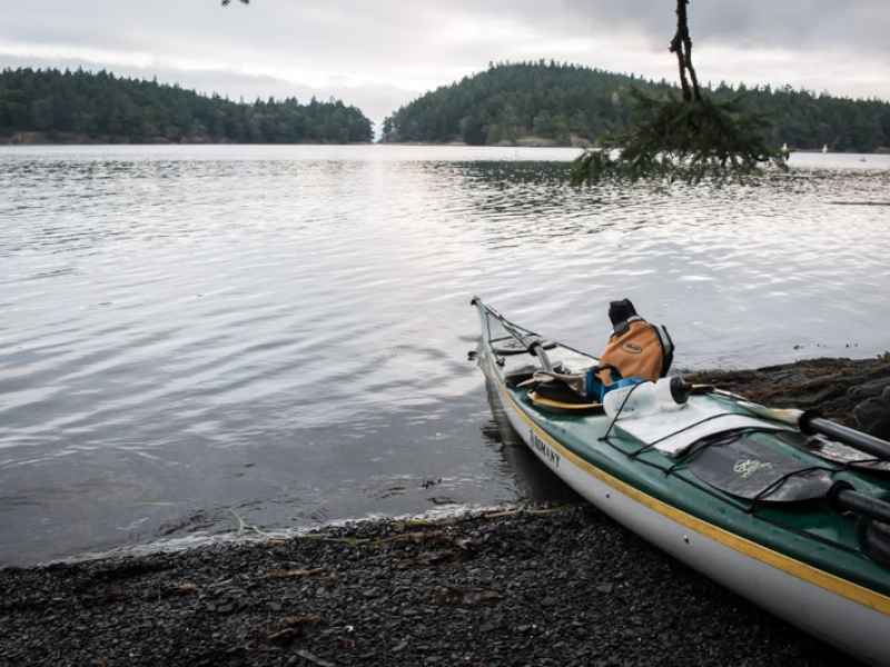 Kayaking the San Juan Islands allows you to experience the natural beauty of the area