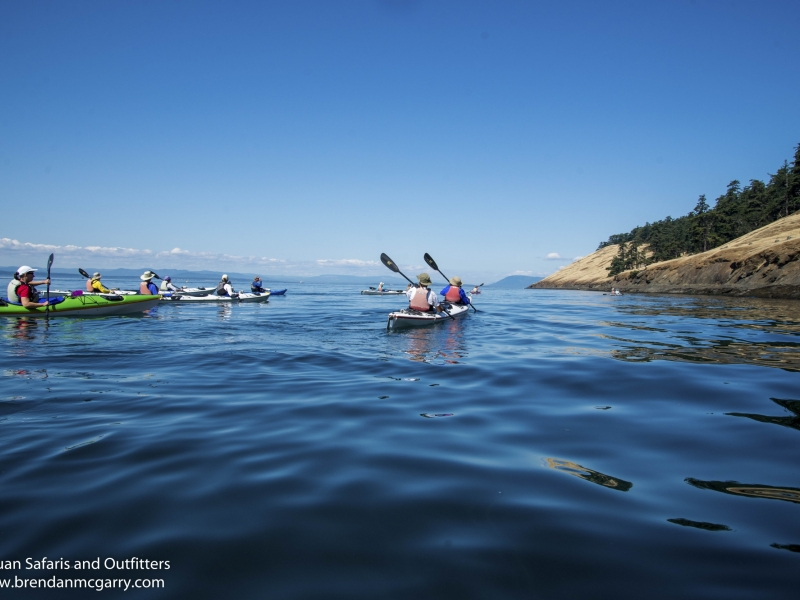 See amazing views while sea kayaking the San Juan Islands