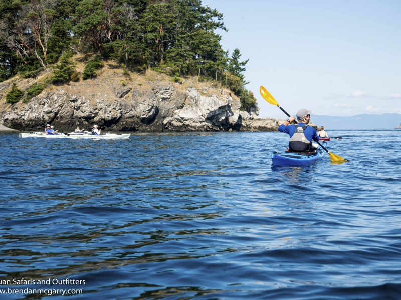 Take a guided kayak tour from Friday Harbor
