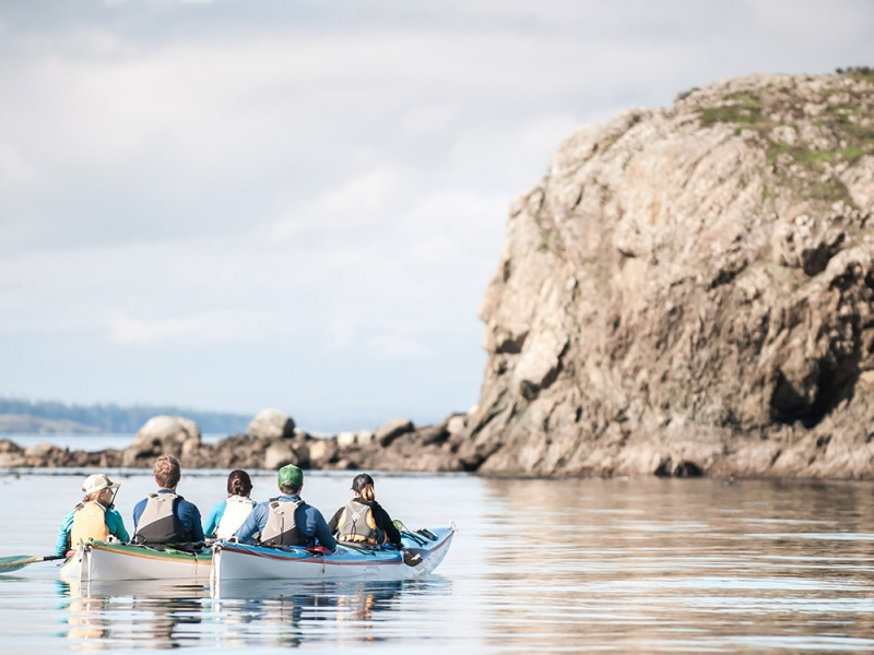 Join a family kayak tour from Friday Harbor or Roche Harbor