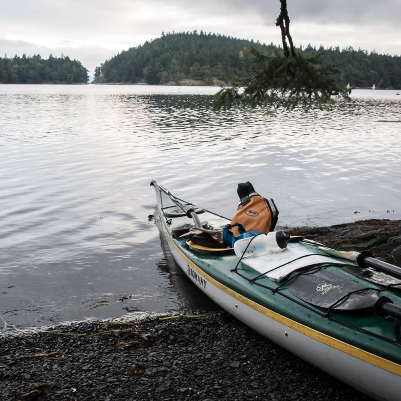 Kayaking with San Juan Outfitters helps the community help our endangered killer whales