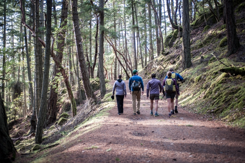 Go hiking in the San Juan Islands in combination with a kayak tour