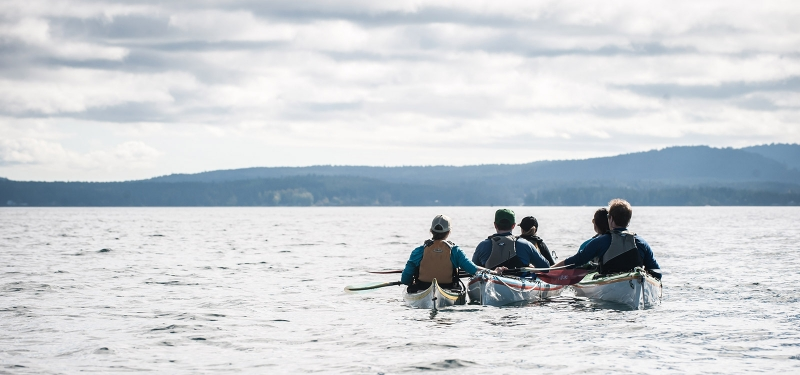 San Juan Island Outfitters can help you get to the best places on a kayak or while whale watching