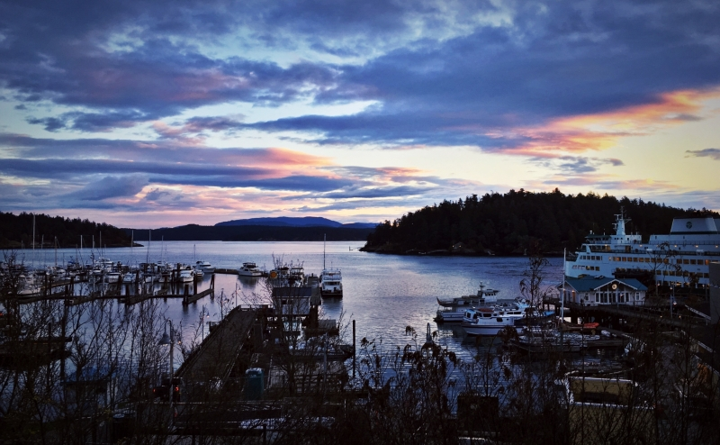 Friday Harbor from Above